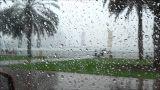 محافظ أسيوط يعلن رفع حالة الطوارئ لمواجهة سقوط الأمطار • أخبار السياحة